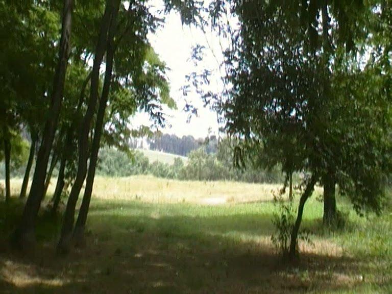 minucciano place